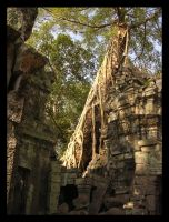 Temple of the Jungle Trees by altarbaby