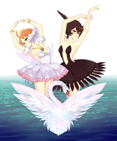 swan lake by cherrycheezy