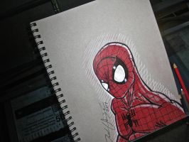 Spidey! by Jsmigle