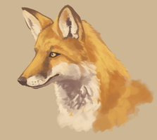 Fox Speedpaint by Singarl