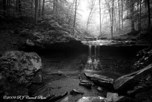 Cuyahoga Valley Natl Park XI by rjcarroll