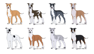 American Pit bull Terrier Designs - CLOSED by xMush-Kennelsx