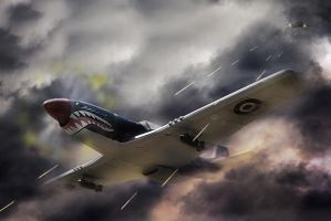 Dogfight by DaYDid