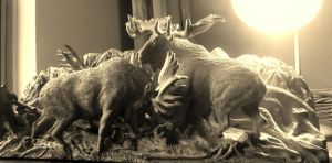 Moose bull fighting in black and white by woodcarve