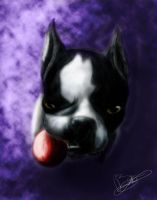 Dog Portait 1 by Flooboo