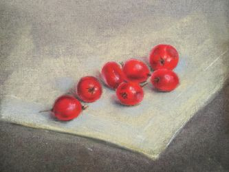 Red berries by favouriteflavor