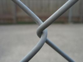 fence wire by izzy-rox13