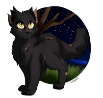 Day 13 - Yellowfang (30 Day Warrior Cat Challenge) by LostMews