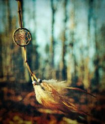 Dreamcatcher. by foreverconstant