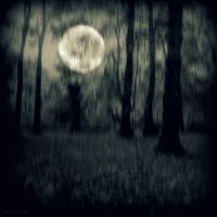 Cold moon by lostknightkg