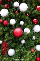 Red and White Ornaments  by peterkopher