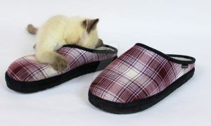 kitty slippers by Carameldreamsx