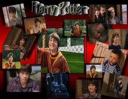Harry Potter Wallpaper by doraleepee