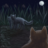 Graystripe's return by By-Amberflame