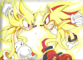Sonic Vs Shadow by lance531