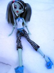 Frankie in winter by clawdeenw