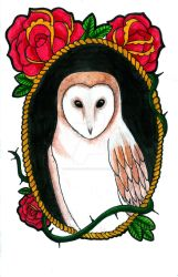 Barn Owl and Roses Marker Illustration by ChelseaFerranti