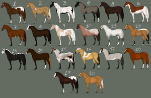 Natural Equine Adopts by SnippleSnape