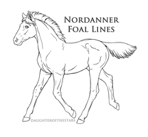 Nordanner Official Foal Lines - PNG - by Cloudrunner64