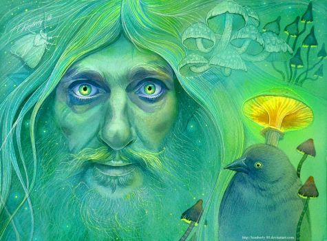 Radagast by kimberly80