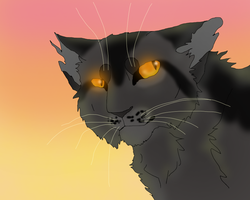 Graystripe by TheRealBramblefire