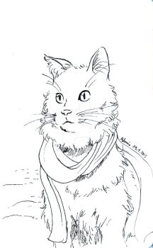 January 19th - Scarf Cat