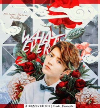 Just Whatever [Feat. Lu Han] by Asweety16
