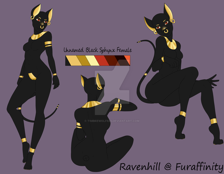 Unnamed Black Sphynx Adoptable - OPEN $35 by Timbrewolf823