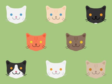 Cats by apparate