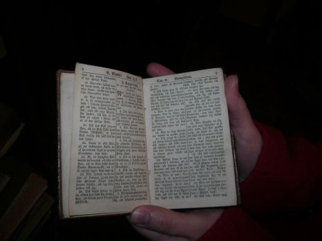 200 year old Swedish Bible by Coleslayer