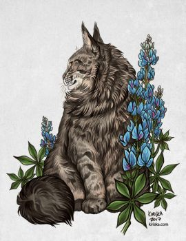 Bailey and Bluebonnets by Kiriska