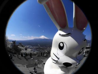 Fuji Rabbit by Jasper-M