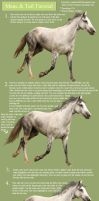 Horse Hair Painting Tutorial by romino4000