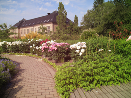 Oslo - Garden of Roses by ErinPtah