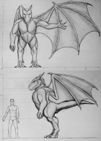Draconid Compendium Scale by Spacer176