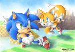 Level Sonic and Boss Tails by Pichu-Chan