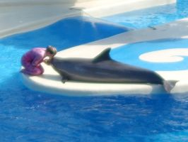 Dolphins Kiss by FDQ
