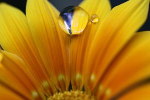 Water drops 34 by yvaine2010