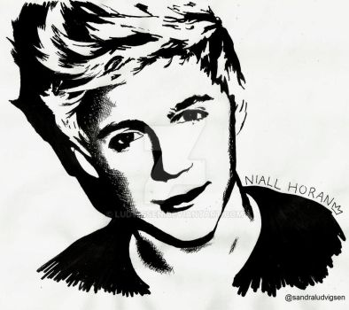 Niall Horan One Direction by ludvigsen