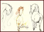 Horses Practice by Mavelle-Ealenyr