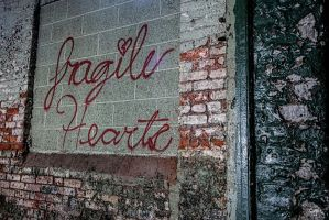 Abandoned Lace Company - Fragile Hearts by cjheery