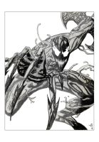 Carnage_ by phlud