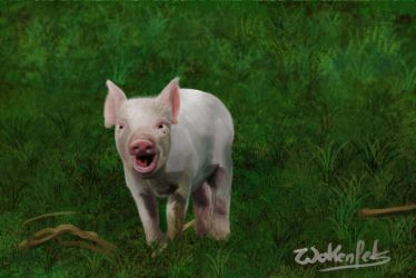 Animal Challenge 1 Piglet by Wolkenfels