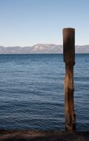 Wood on Water by FellowPhotographer