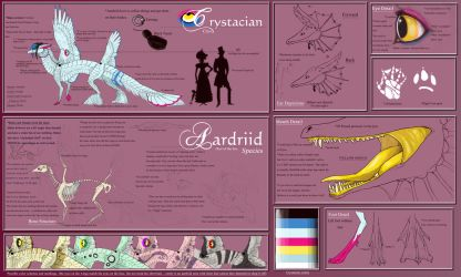 official crys and aardriid ref by Anarchpeace