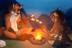 Camping by WolfRoxy