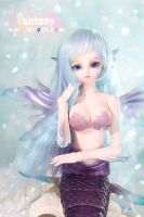 Loong soul doll - Siren - Celia Limited(60sets) by LoongSoul