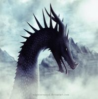 Dragon #7 by SeigneurNazgul