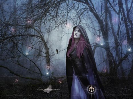 Bewitching The Forest by maiarcita