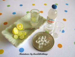 Miniature Ice Water by ilovelittlethings